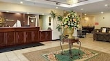Hotel Southaven - Vacanze a Southaven, Albergo Southaven
