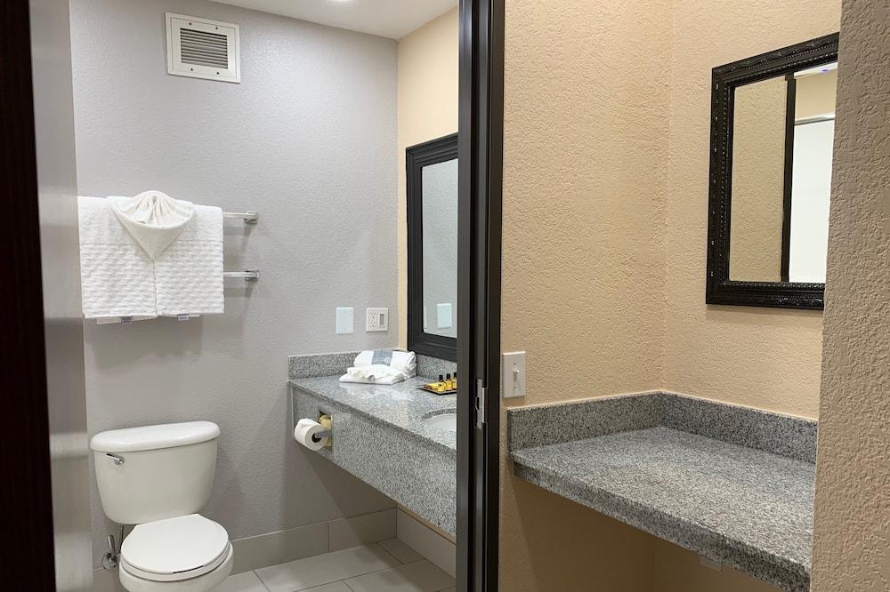 Standartinio tipo kambarys, 1 labai didelė dvigulė lova, su patogumais neįgaliesiems - Vonios kambarys