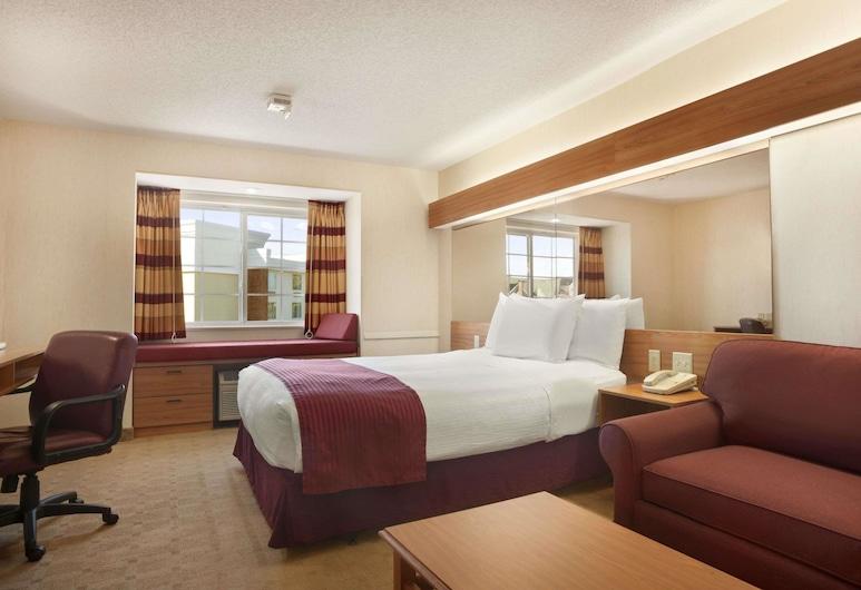 Microtel Inn & Suites by Wyndham Ann Arbor, Ann Arbor, Stúdíósvíta - 1 stórt tvíbreitt rúm með svefnsófa - gott aðgengi - Reyklaust (Mobility), Herbergi