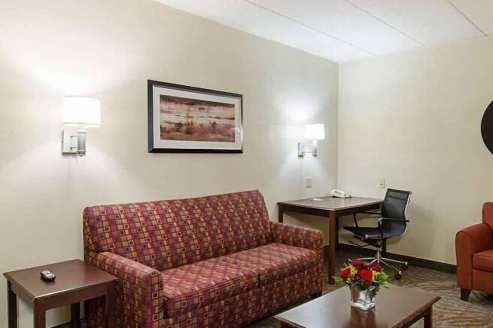 Suite, Multiple Beds, Non Smoking - Living Room