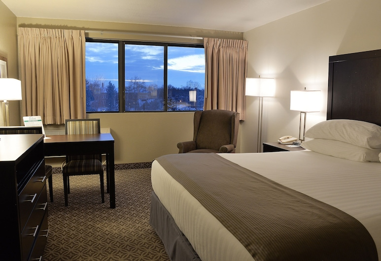 Riversage Billings Inn, Billings, Business-Zimmer, 1King-Bett, Zimmer