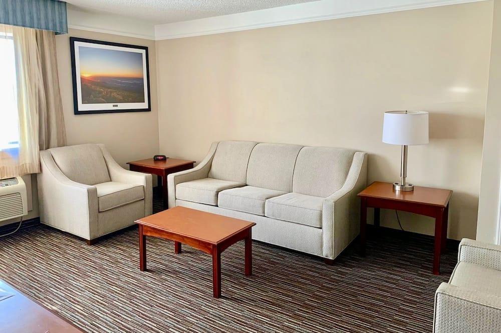 Sviit, 1 ülilai voodi, suitsetamine keelatud (One-Bedroom Suite) - Elutuba