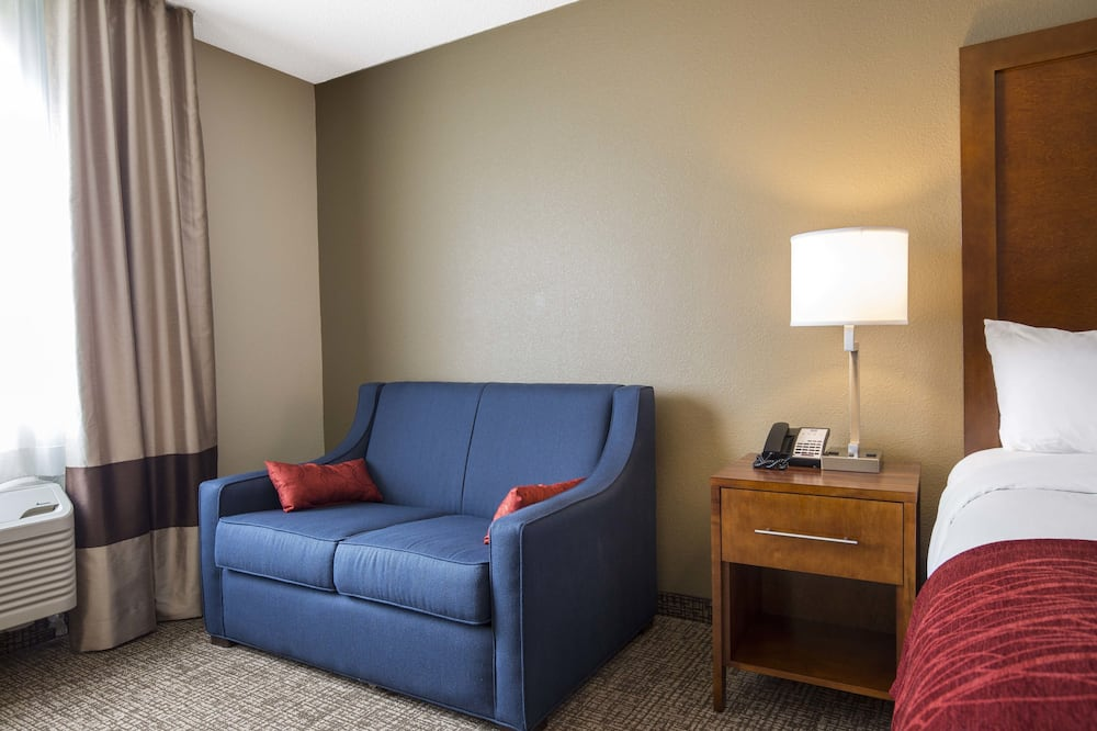 ห้องสวีท, เตียงคิงไซส์ 1 เตียง และโซฟาเบด, ปลอดบุหรี่ (2 Person Sofa Bed) - พื้นที่นั่งเล่น