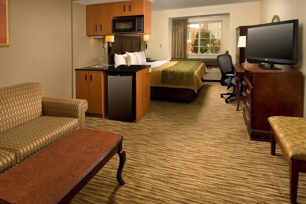 基本套房, 1 張特大雙人床及 1 張梳化床 (1 Person Sofa Bed) - 客廳