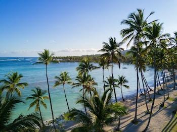 Bild vom Grand Paradise Samana-an Amhsa Marina Resort-All Inclusive in Las Galeras