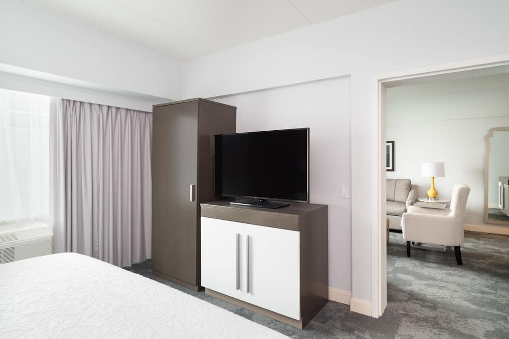 Suite, 1 King Bed, Accessible, Bathtub - Guest Room