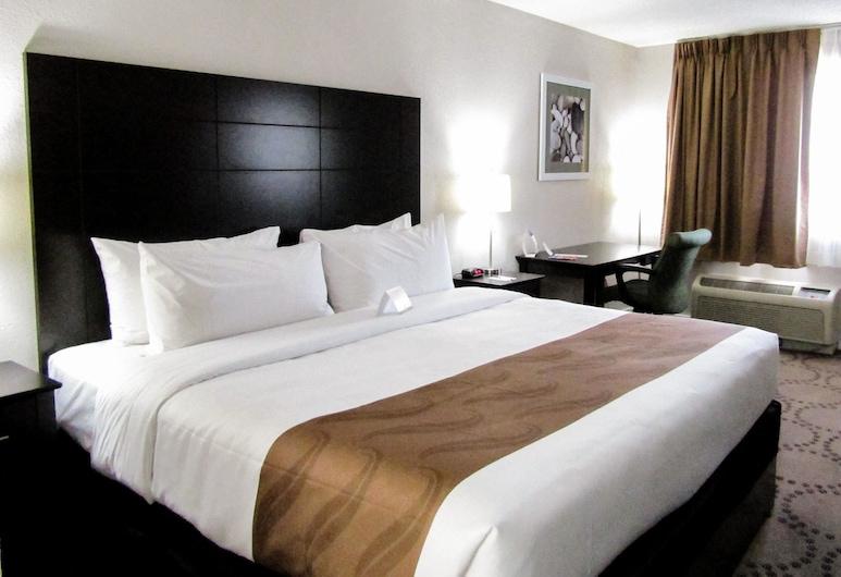 Quality Inn & Suites Kissimmee by The Lake, Kissimmee, Standardrum - 1 kingsize-säng - icke-rökare, Gästrum