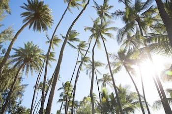 Picture of Lotus Honolulu at Diamond Head in Honolulu