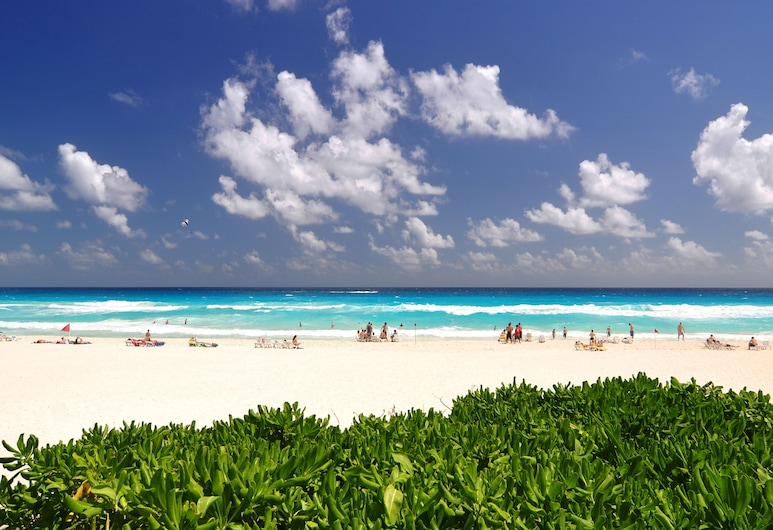 Grand Oasis Cancun All Inclusive, Cancún, Playa