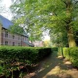 Dārzs