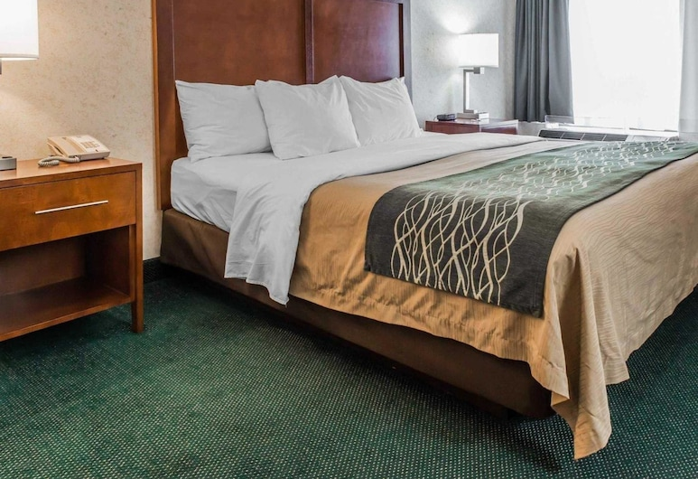 Quality Inn, Waynesburg, Camera Standard, 1 letto king, non fumatori, Camera