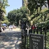 Park manzarası