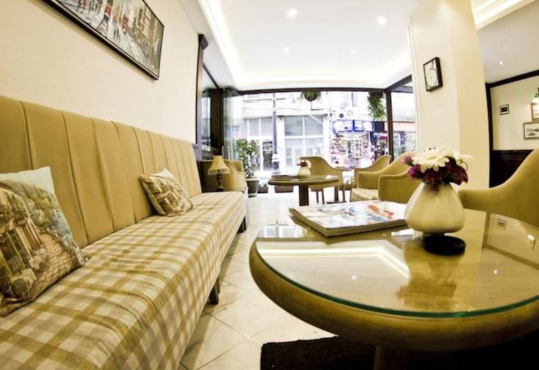 Hotel Ilkay, Istanbul, Khu phòng khách tại tiền sảnh