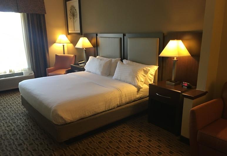 Holiday Inn Express & Suites Albermarle, Albemarle, Vierashuone
