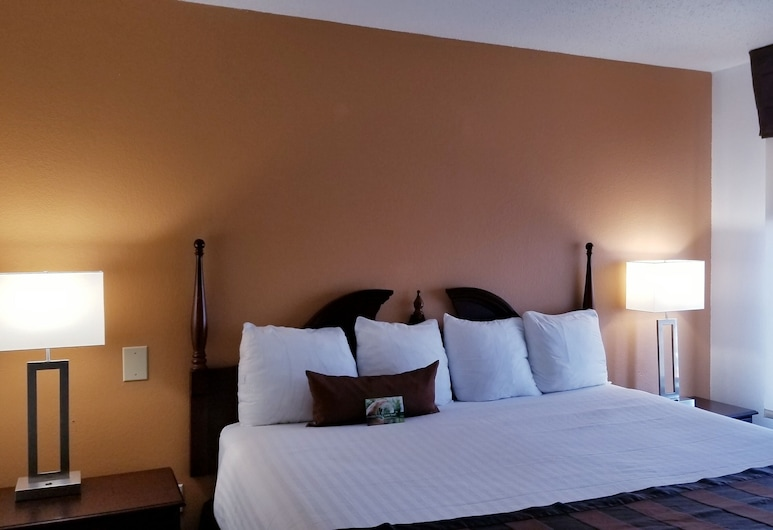 Wingate by Wyndham Indianapolis Airport-Rockville Rd., Indianapolis, Guest Room