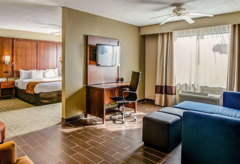 Comfort Suites, Τζόρτζταουν, Δωμάτιο επισκεπτών
