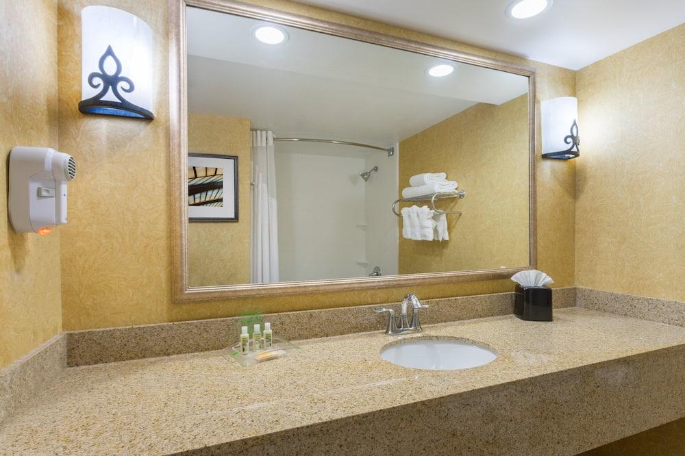 Huone, 1 suuri parisänky, Esteetön, Tupakointi kielletty (Mobility Roll-In Shower) - Kylpyhuone