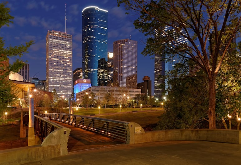 Best Western Plus Downtown Inn & Suites, Houston, Sports Facility