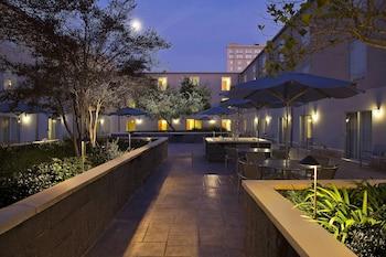 תמונה של SpringHill Suites by Marriott New Orleans DT/Convention Ctr בניו אורלינס