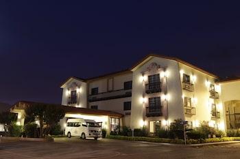 Фото Quinta Dorada Hotel and Suites у місті Салтілло