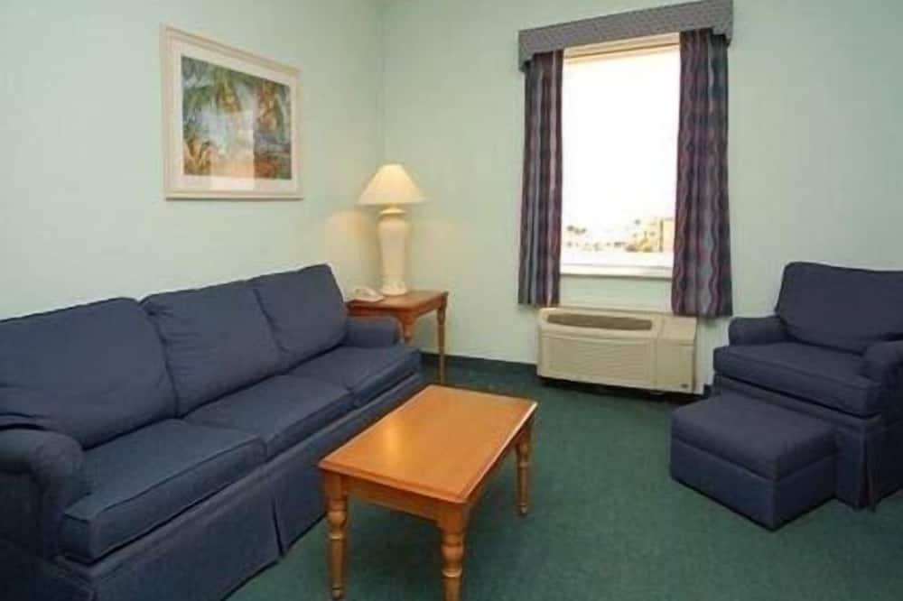 ห้องสแตนดาร์ดสวีท, เตียงควีนไซส์ 1 เตียง และโซฟาเบด, พร้อมสิ่งอำนวยความสะดวกสำหรับผู้พิการ - ห้องนั่งเล่น