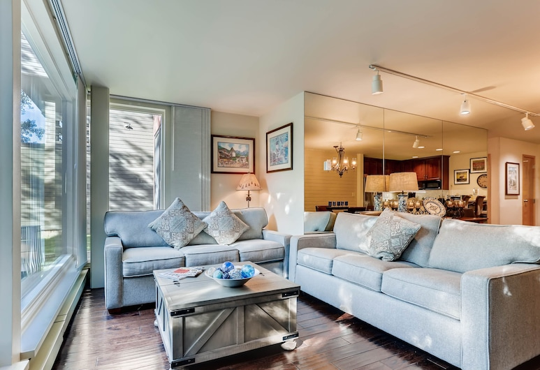 新巴路公寓式客房 2 床/2 衛酒店, 韋爾, 豪華公寓客房, 2 間臥室, 廚房 (Gold), 客廳
