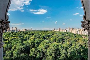 Foto The Ritz-Carlton New York, Central Park di New York