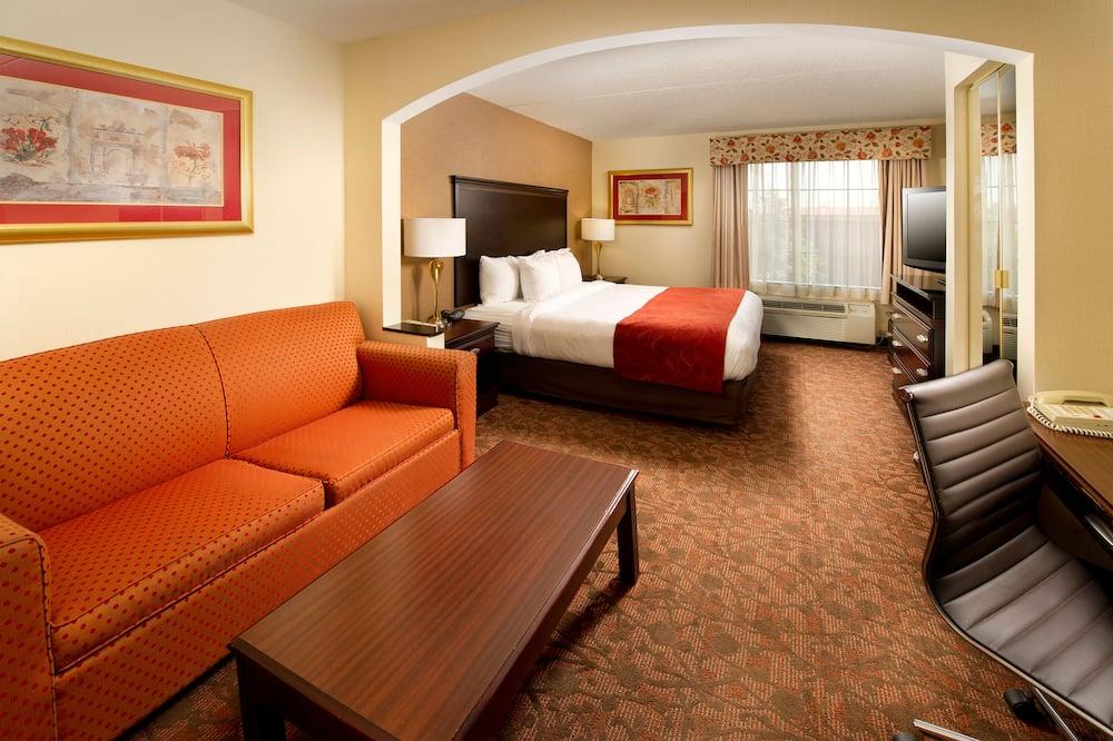 Business Suite, 1 Katil Raja (King) dengan Katil Sofa, Non Smoking - Ruang Tamu