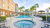 Choose This Mid-Range Hotel in Sarasota