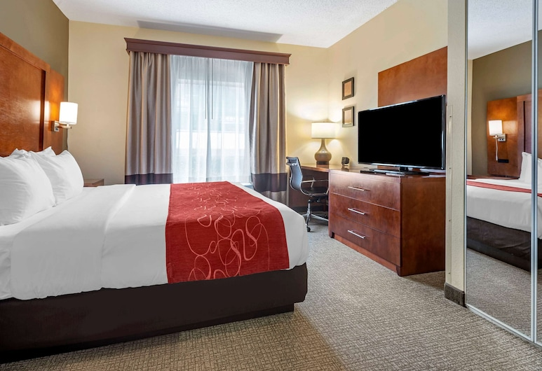 Comfort Suites Newark - Harrison, Newark, Suite, 1 King Bed, Accessible, Non Smoking, Guest Room