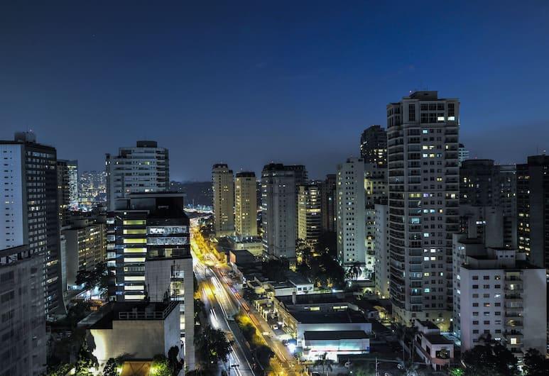Radisson Blu São Paulo, San Paulas, Vaizdas iš viešbučio