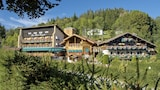Picture of Les Bas Rupts Et Chalet Fleuri in Gerardmer