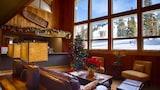 Hotely – Alta,ubytovanie: Alta,online rezervácie hotelov – Alta
