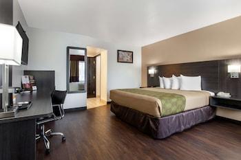 Picture of SureStay Hotel by Best Western Phoenix Airport in Phoenix