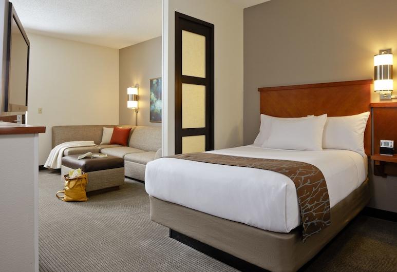 Hyatt Place Fort Worth Cityview, Fort Worth, Camera Standard, 1 letto king con divano letto, Camera