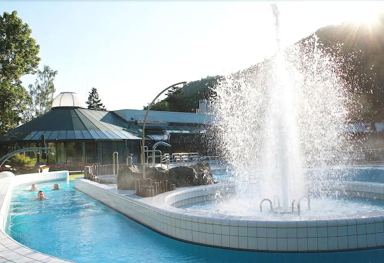 Wellnesshotel Germania Bad Harzburg, Bad Harzburg, Āra baseins