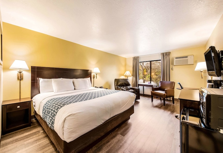 Econo Lodge Mayo Clinic Area, Rochester, Standard Room, 1 King Bed, Non Smoking, Guest Room