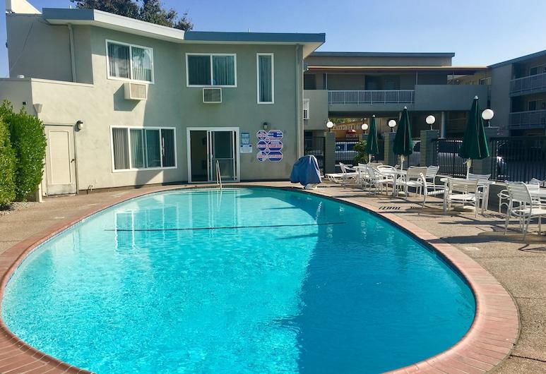 Pacific Motor Inn, San José, Kültéri medence