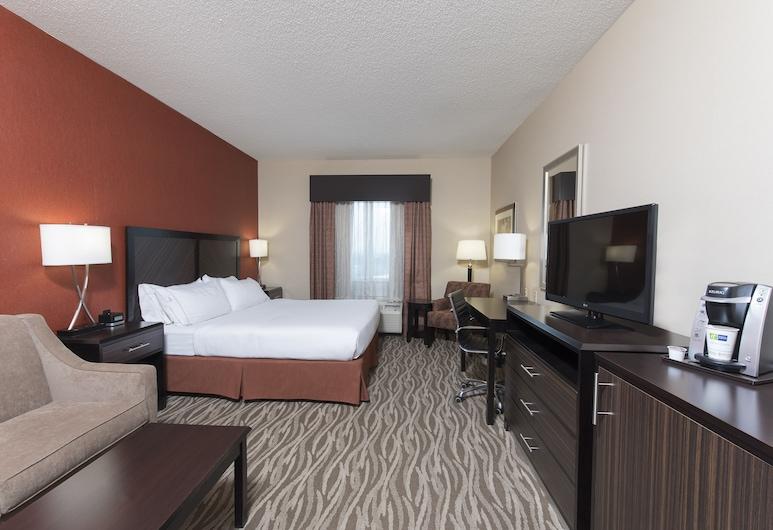Holiday Inn Express Hotel & Suites Grand Rapids-North, Grand Rapids, Habitación, 1 cama King size con sofá cama, para no fumadores, Habitación