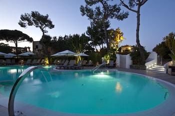 Ischia bölgesindeki Hotel Hermitage & Park Terme resmi