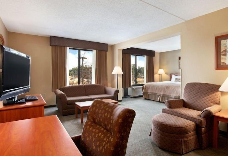 Wingate by Wyndham Little Rock, Little Rock, Studio Suite, 1 King Bed, Non Smoking, Guest Room