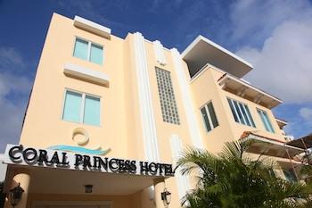 Picture of Coral Princess Hotel in San Juan