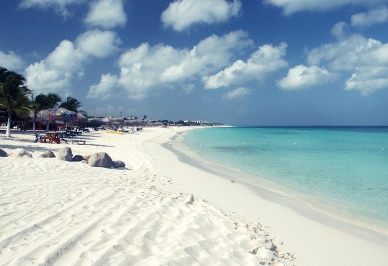 Aruba Blue Village, Noord, Paplūdimys