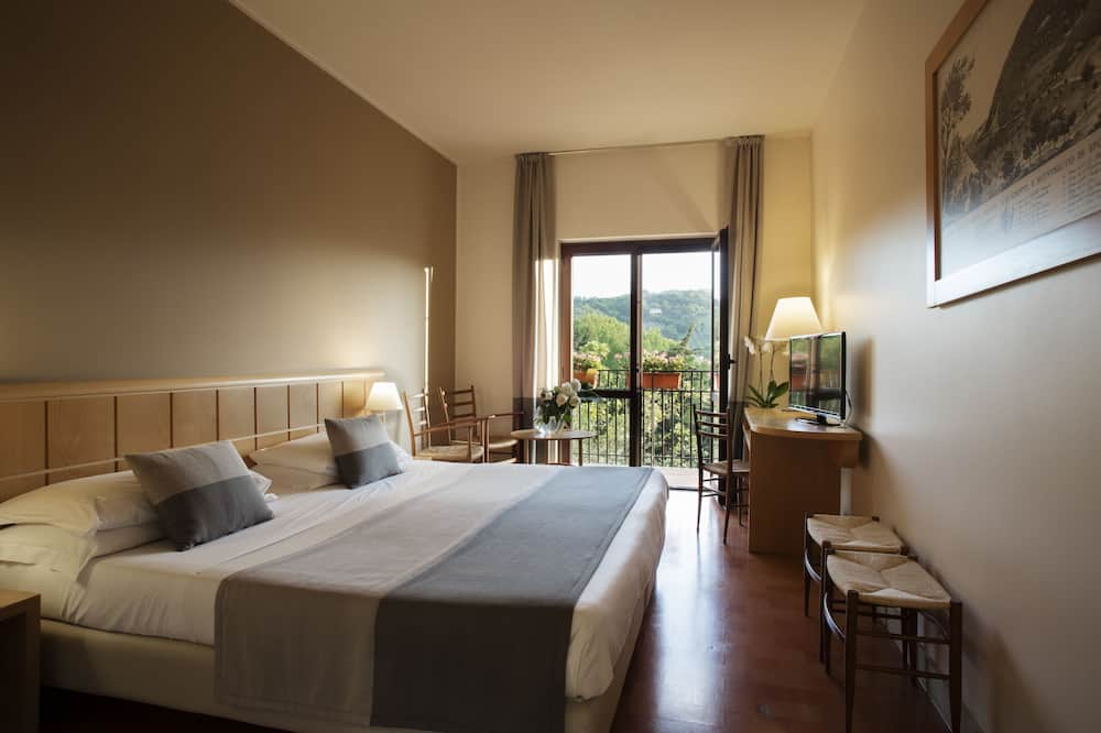 Superior tweepersoonskamer, voor 1 persoon - Kamer