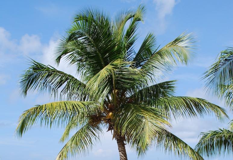 Tamarind Beach Hotel & Yacht Club, Νησί Canouan, Παραλία