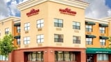 Choose This 2 Star Hotel In Alameda