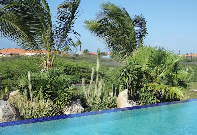 Aruba Cunucu Residence, Noord, Lauko baseinas