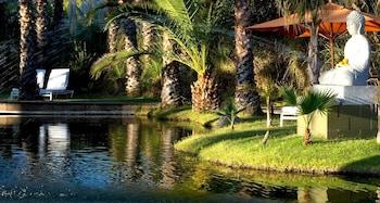 Calistoga bölgesindeki Indian Springs Resort & Spa resmi