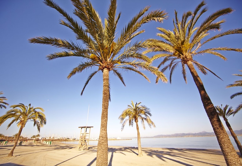 MLL Palma Bay Club Resort Hotel, Playa de Palma, Strand