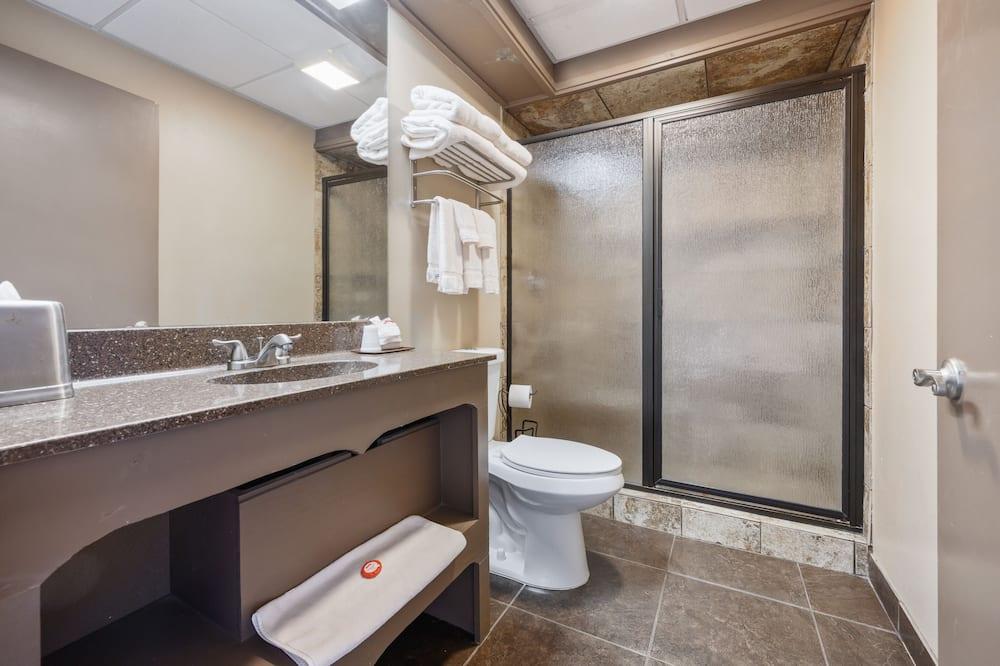 Room (The Elvis Presley Room) - Bathroom